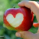 طعم سیب...