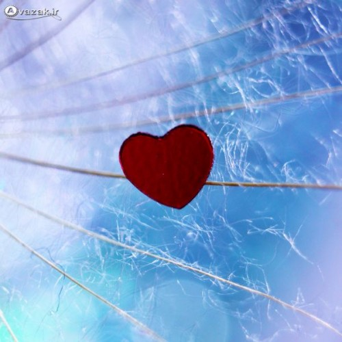 normal_Avazak_ir-Love11413